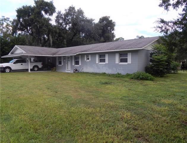 193 N Sunset Drive, Mount Dora, FL 32757 (MLS #G5019685) :: Team 54