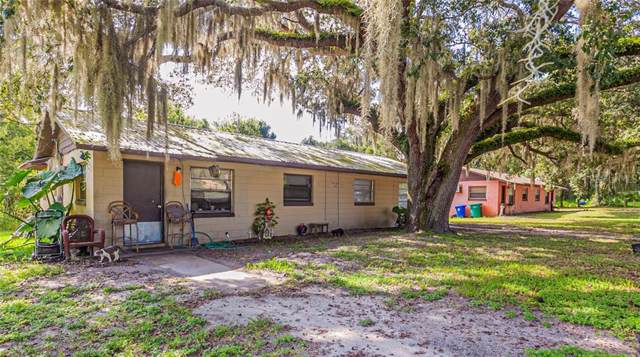 7019 County Road 242, Wildwood, FL 34785 (MLS #G5019746) :: Griffin Group