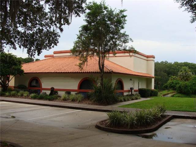 307 Lagrande Boulevard, Lady Lake, FL 32159 (MLS #G5019852) :: The Duncan Duo Team