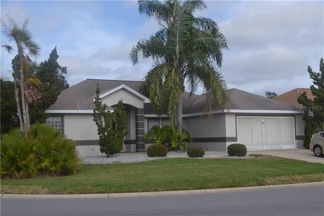 11676 SE 174 LOOP, Summerfield, FL 34491 (MLS #G5020042) :: Ideal Florida Real Estate