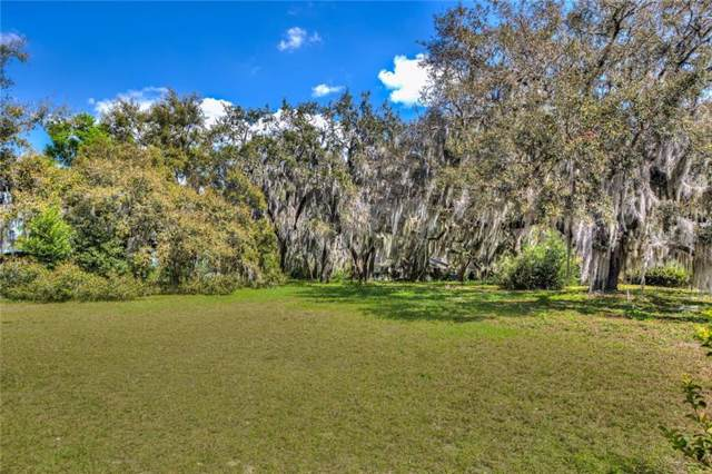 1224 Park Place, Mount Dora, FL 32757 (MLS #G5020209) :: Cartwright Realty
