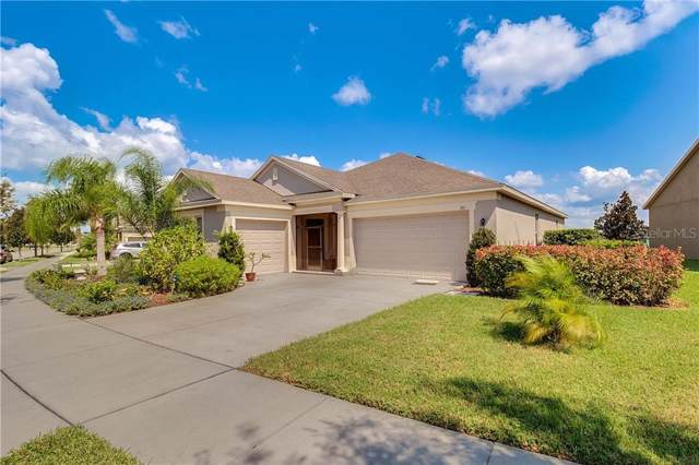 261 Blue Cypress Drive, Groveland, FL 34736 (MLS #G5020210) :: Griffin Group