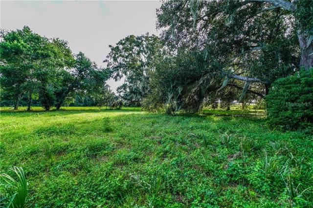 Amvets Way, Mount Dora, FL 32757 (MLS #G5020237) :: Cartwright Realty