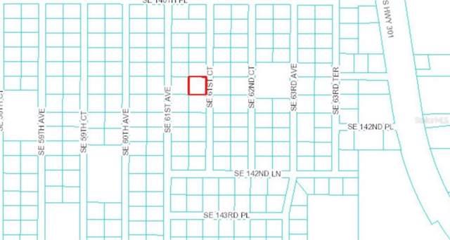 Se 61St Ct, Summerfield, FL 34491 (MLS #G5020283) :: Premier Home Experts