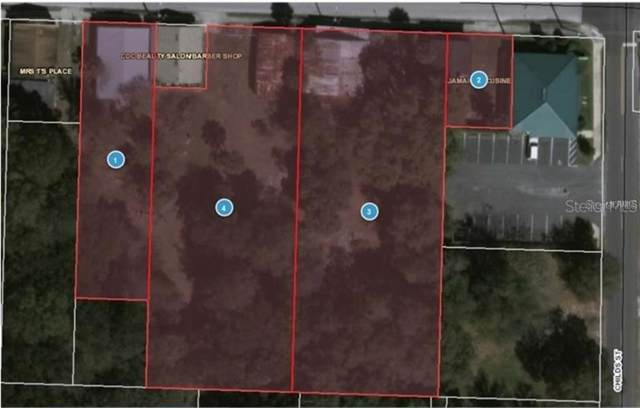 307, 317, 323, 327 Pine Street, Leesburg, FL 34748 (MLS #G5020285) :: Cartwright Realty