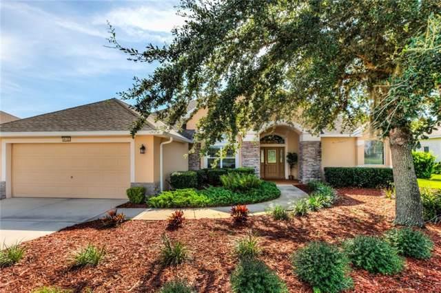 8132 Bridgeport Bay Circle, Mount Dora, FL 32757 (MLS #G5020358) :: Cartwright Realty
