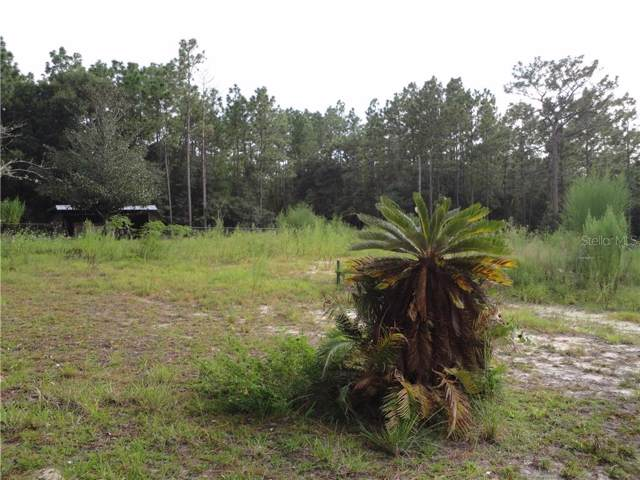 9930 SE 121ST Place, Belleview, FL 34420 (MLS #G5020443) :: Armel Real Estate