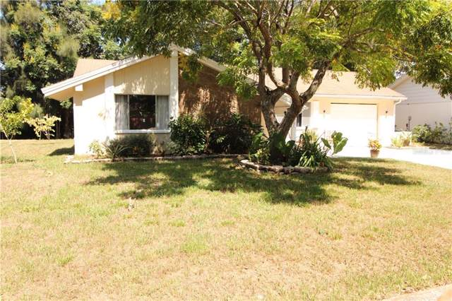 8509 Mill Creek Lane, Hudson, FL 34667 (MLS #G5020859) :: Cartwright Realty