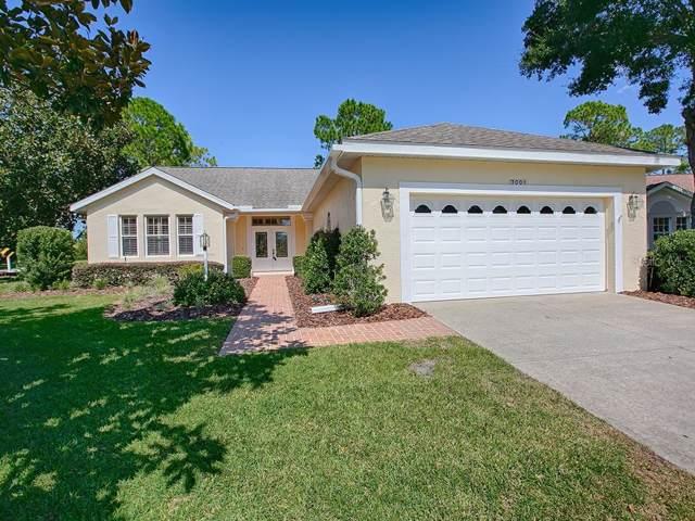 7001 Pine Hollow Drive, Mount Dora, FL 32757 (MLS #G5020894) :: Baird Realty Group