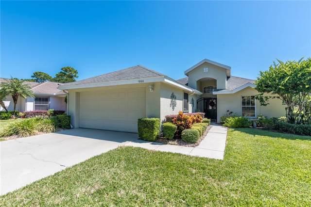 1800 Stafford Springs Boulevard, Mount Dora, FL 32757 (MLS #G5020955) :: Cartwright Realty
