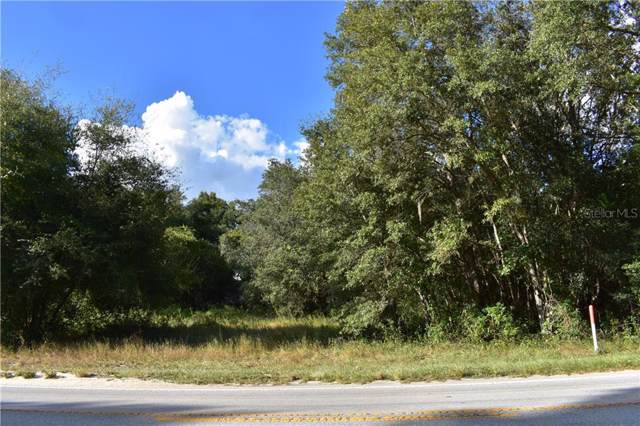 Lake Griffin Road, Lady Lake, FL 32159 (MLS #G5021457) :: Lockhart & Walseth Team, Realtors