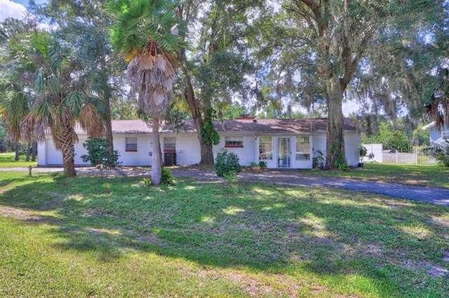 10700 SE Timucuan Road, Summerfield, FL 34491 (MLS #G5021713) :: Cartwright Realty
