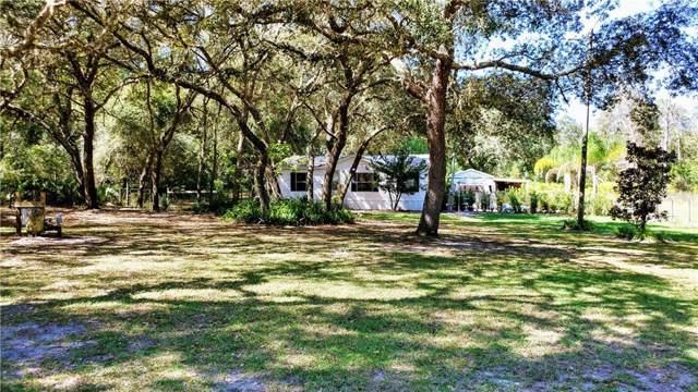 10030 SE 182ND AVENUE Road, Ocklawaha, FL 32179 (MLS #G5021714) :: Bustamante Real Estate