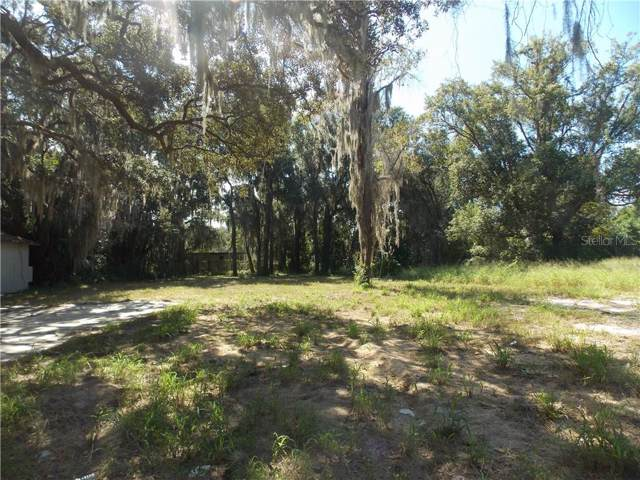 Grant Avenue, Mount Dora, FL 32757 (MLS #G5021850) :: Bustamante Real Estate