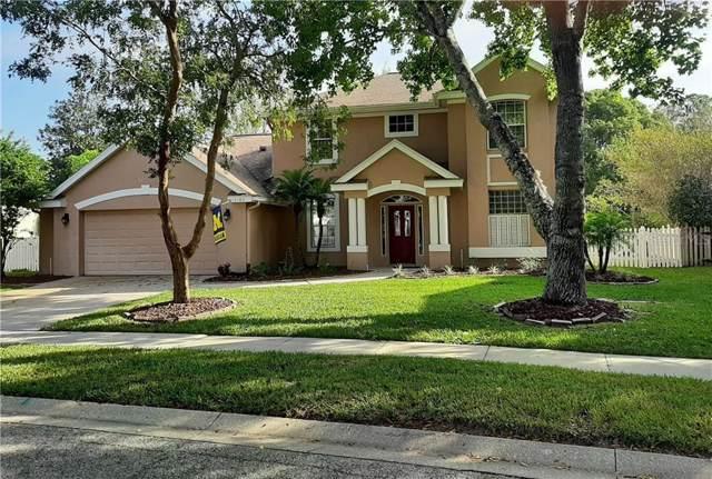 2180 Park Forest Boulevard, Mount Dora, FL 32757 (MLS #G5022202) :: 54 Realty