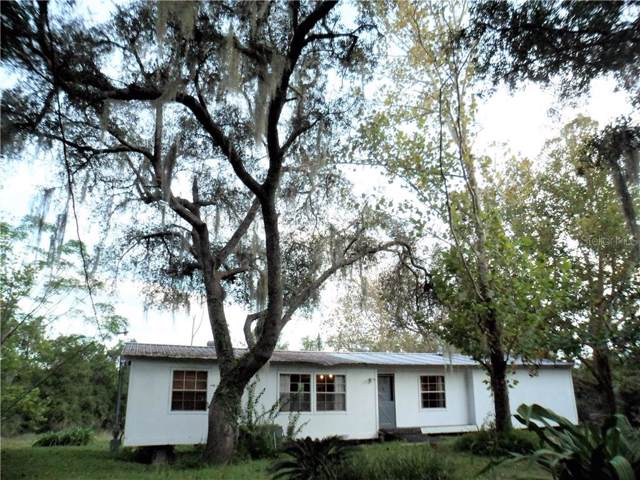 19628 Saltsdale Road, Umatilla, FL 32784 (MLS #G5022429) :: Cartwright Realty