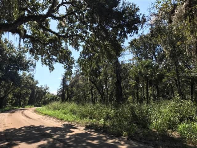 Lake Unity Nursery Road, Fruitland Park, FL 34731 (MLS #G5022747) :: The Duncan Duo Team