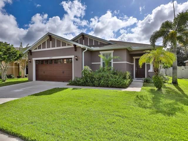 30235 Cheval Street, Mount Dora, FL 32757 (MLS #G5022799) :: Cartwright Realty
