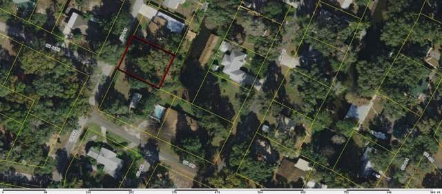Cr 448, Lake Panasoffkee, FL 33538 (MLS #G5022824) :: Griffin Group