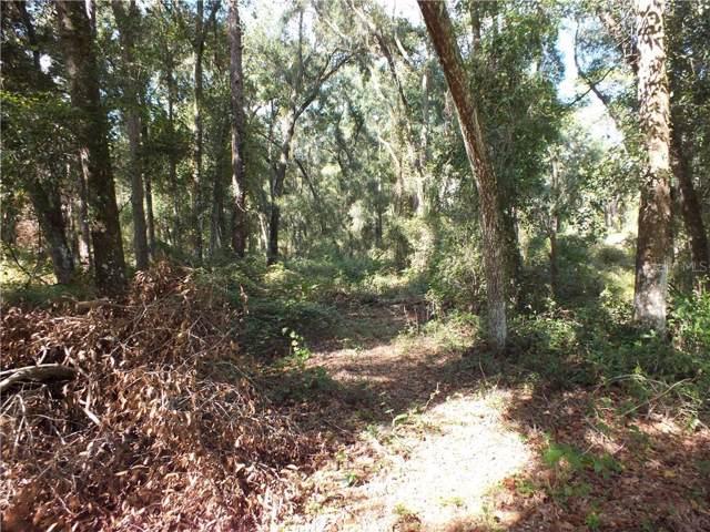 Ne 28Th Ln, Wildwood, FL 34785 (MLS #G5022840) :: The Robertson Real Estate Group