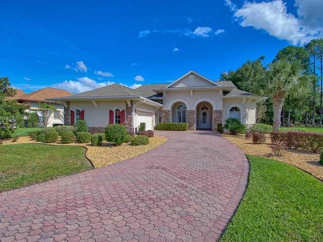 38610 Lakeview Walk, Lady Lake, FL 32159 (MLS #G5022858) :: Team Bohannon Keller Williams, Tampa Properties