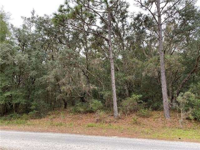 7303 Willoughby Drive, Webster, FL 33597 (MLS #G5023007) :: Rabell Realty Group