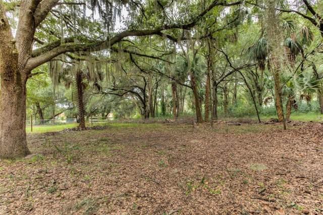 Oak Avenue, Mount Dora, FL 32757 (MLS #G5023042) :: Baird Realty Group