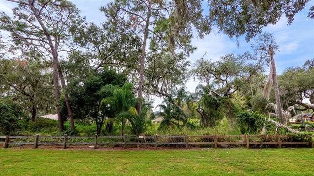 9524 Louisa Woods Court, Clermont, FL 34711 (MLS #G5023080) :: Bustamante Real Estate