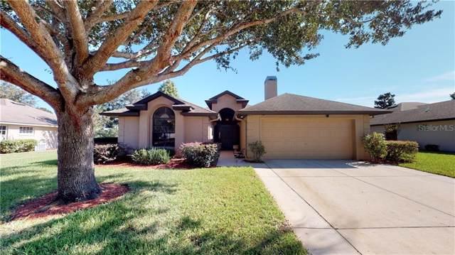 4721 Abaco Drive, Tavares, FL 32778 (MLS #G5023083) :: NewHomePrograms.com LLC