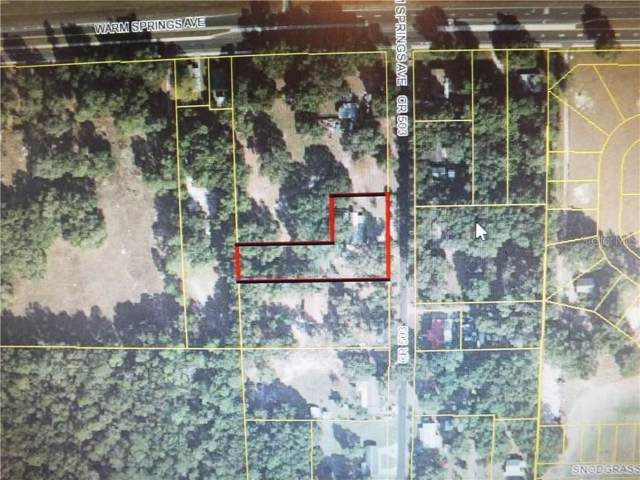 2930 County Road 503, Wildwood, FL 34785 (MLS #G5023095) :: The Robertson Real Estate Group