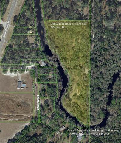 39952 Lacoochee Claysink Road, Webster, FL 33597 (MLS #G5023133) :: The Duncan Duo Team