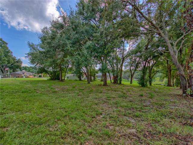 Overton Drive, Leesburg, FL 34788 (MLS #G5023303) :: Team Bohannon Keller Williams, Tampa Properties