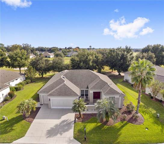 13227 SE 91ST COURT Road, Summerfield, FL 34491 (MLS #G5023343) :: The Duncan Duo Team