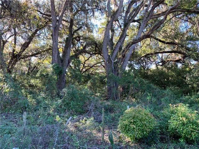 East Warm Springs Avenue, Wildwood, FL 34785 (MLS #G5023584) :: Armel Real Estate