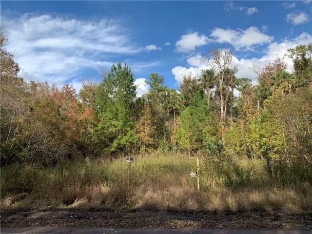 0 Possum Road, Astor, FL 32102 (MLS #G5023609) :: Cartwright Realty