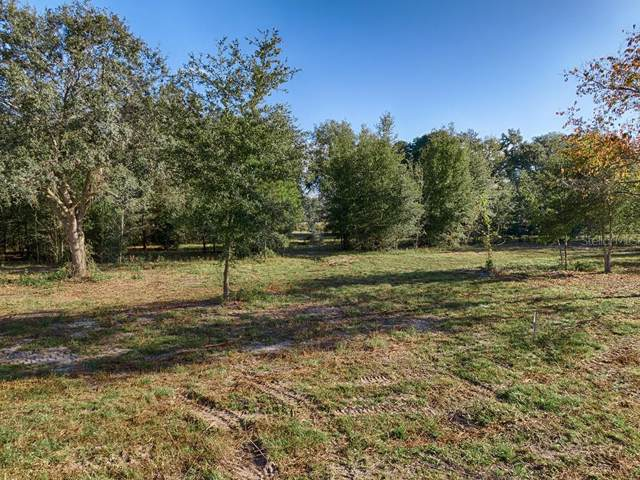 9250 S Highway 314A, Ocklawaha, FL 32179 (MLS #G5023860) :: Cartwright Realty