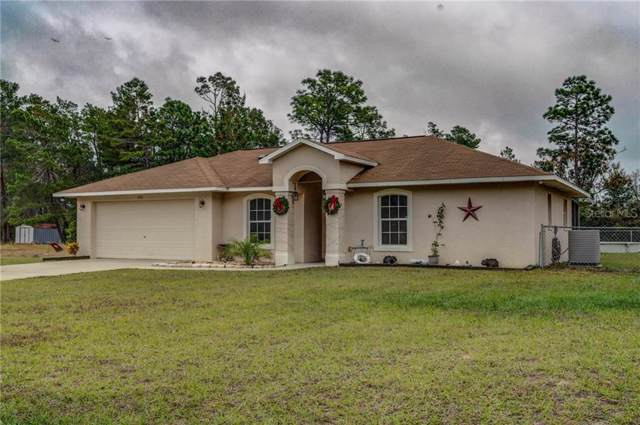 800 W 5TH Avenue, Umatilla, FL 32784 (MLS #G5023900) :: Andrew Cherry & Company