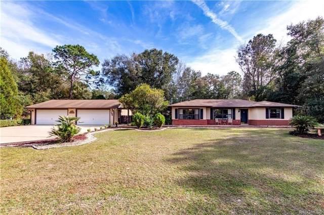 9982 N Sandree Drive, Citrus Springs, FL 34434 (MLS #G5024364) :: 54 Realty