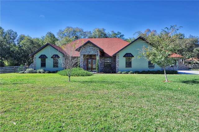 6606 NE 61ST AVENUE Road, Silver Springs, FL 34488 (MLS #G5024526) :: Bustamante Real Estate