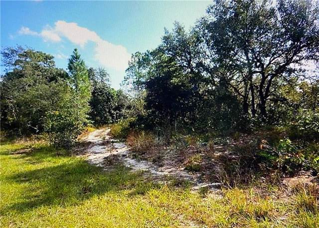 Lemon Drive, Lake Wales, FL 33898 (MLS #G5024576) :: Heckler Realty