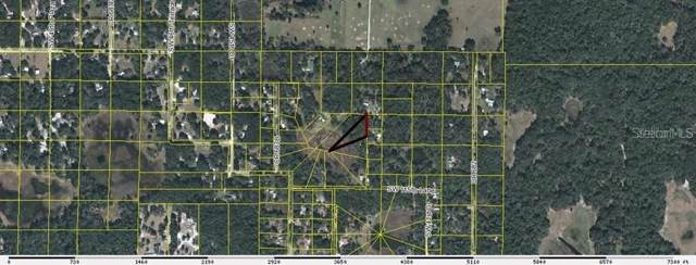 Sw 42Nd Terr, Webster, FL 33597 (MLS #G5024632) :: CENTURY 21 OneBlue