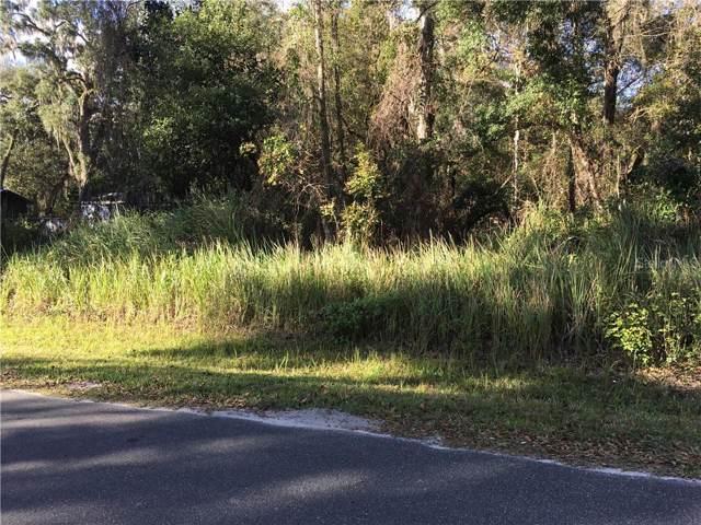 Cr 675W, Webster, FL 33597 (MLS #G5024856) :: Cartwright Realty