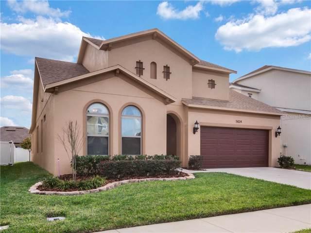 5024 Torchwood Drive, Minneola, FL 34715 (MLS #G5024920) :: Team Bohannon Keller Williams, Tampa Properties