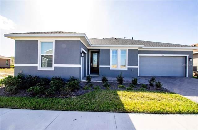 161 Silver Maple Road, Groveland, FL 34736 (MLS #G5024976) :: Burwell Real Estate