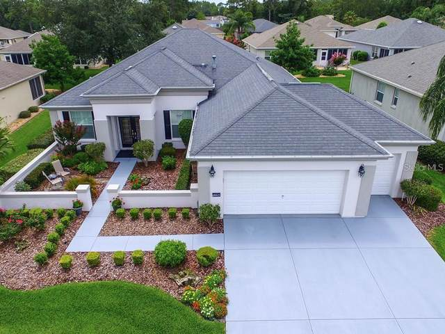 12260 SE 91ST Avenue, Summerfield, FL 34491 (MLS #G5025074) :: Team Bohannon Keller Williams, Tampa Properties
