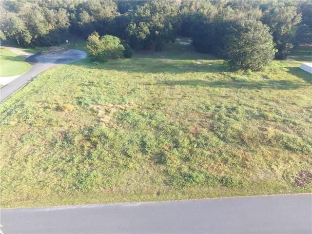1309 Otters View Court, Fruitland Park, FL 34731 (MLS #G5025261) :: Griffin Group