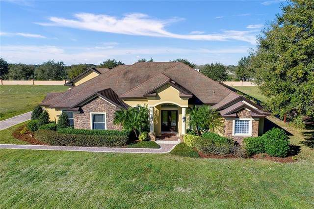 4608 Claire Rose Court, Mount Dora, FL 32757 (MLS #G5025809) :: Premier Home Experts