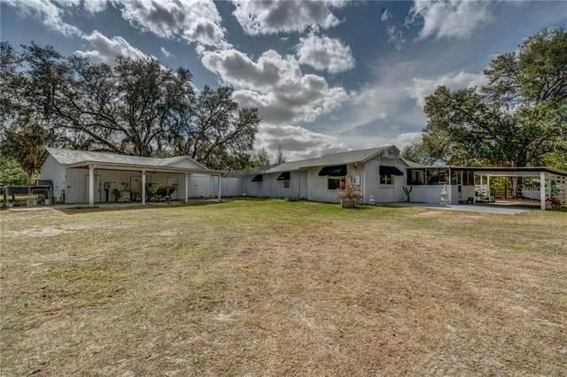 19924 Mccall Road, Altoona, FL 32702 (MLS #G5025973) :: Bustamante Real Estate