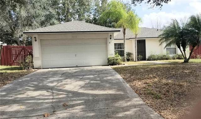 10716 Siena Drive, Clermont, FL 34711 (MLS #G5026200) :: The Price Group