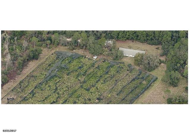 17725 County Road 450A, Umatilla, FL 32784 (MLS #G5026219) :: Pristine Properties